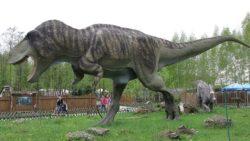 ティラノサウルスの模型の写真