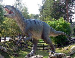 アロサウルスの写真