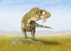 ダスプレトサウルスの写真