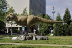 ティラノサウルスの写真