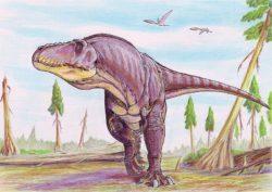 タルボサウルスの写真