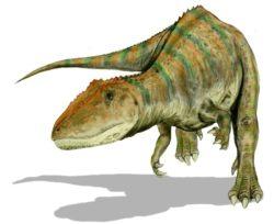 カルカロドントサウルスの写真