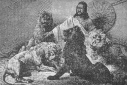 強さの象徴としてのライオンの写真