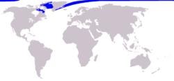 イッカクの分布図