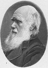ダーウィンの写真