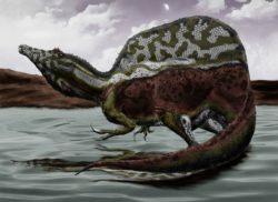 スピノサウルスの写真