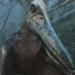 プテラノドンの生態と絶滅の理由!最強の肉食翼竜で天敵はいない?